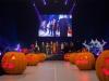 laura-pausini-convention-concerto-evento-show-free-event-andrea-camporesi-creative-director-managment-4-13